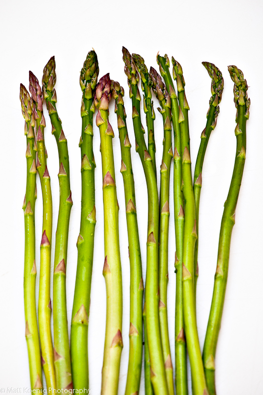 Asparagus spears on white background
