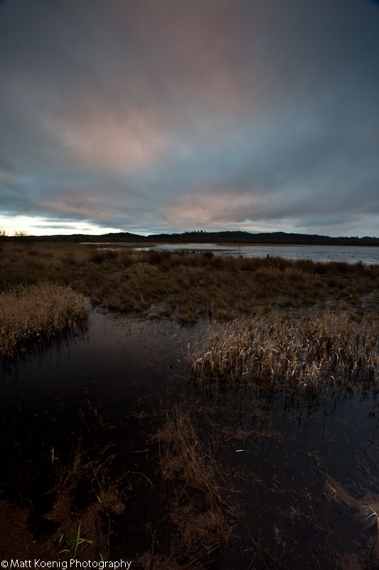 Sunset at Fern Ridge Wildlife Refuge