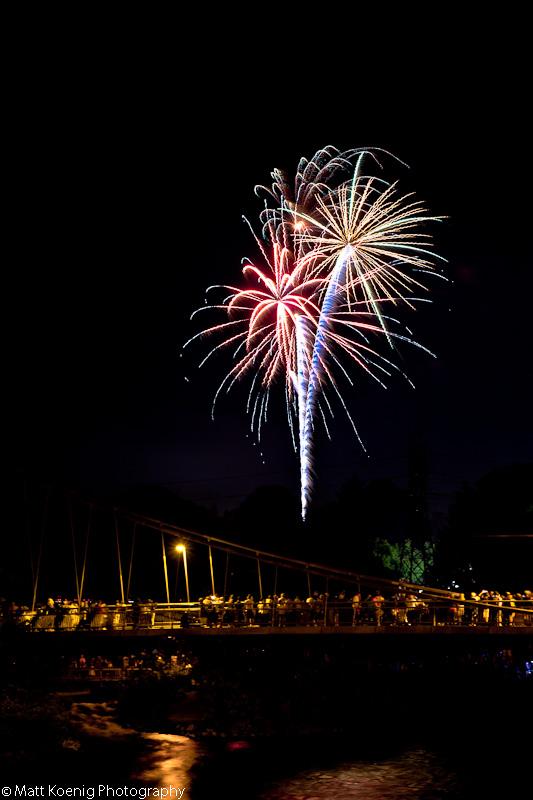 Palm Tree in the Sky - Alton Baker Park fireworks 2011