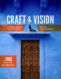 Craft & Vision Free Book