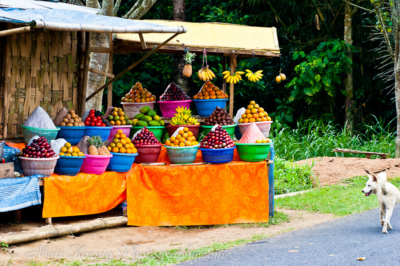 Bali Fruit Stand