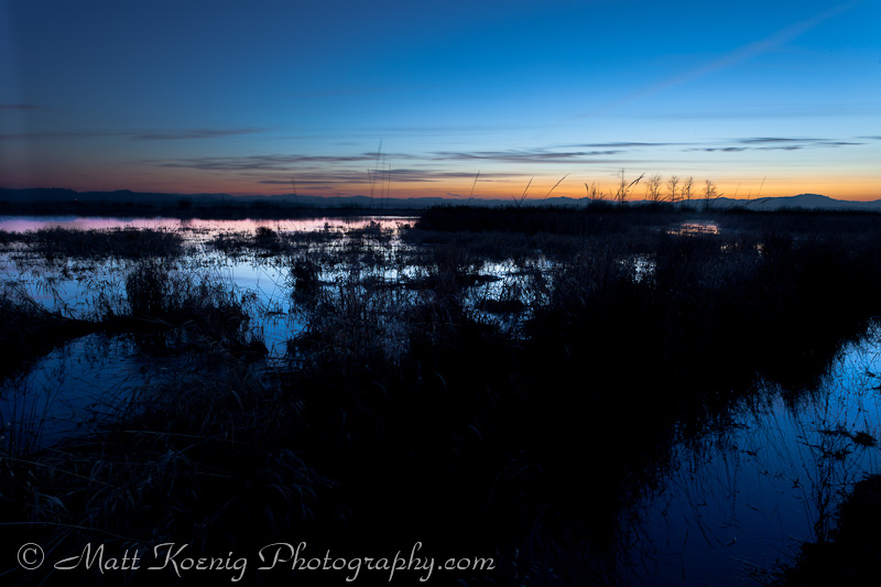 The sunset reflecting on the wetlands