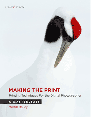 Making the Print by Martin Bailey